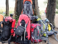 Как выбрать рюкзак?