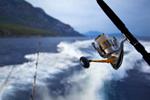 Видеоотчеты о рыбалке